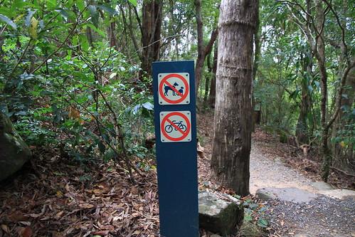 澳洲昆士蘭-Lamington NP -Caves Circuit步道-腳踏車寵物禁入標示-20141120-賴鵬智攝-1