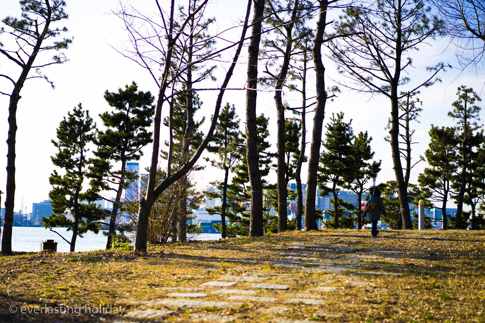 潮風公園 Shiokaze Park-0001