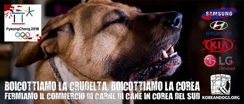 BOICOTTIAMO LA CRUDELTA, BOICOTTIAMO LA COREA (In Italian)