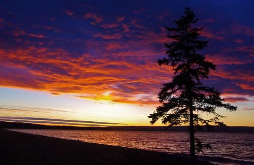 ocean blue sunset sea moon lake reflection geese marine waves novascotia ns ngc brasdorlakes