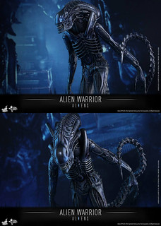 HOT-TOYS-ALIEN-WARRIOR-06