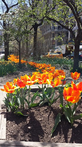 UWS Broadway on a beautiful spring day!