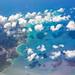 Flying Over Saint Martin/Sint Maarten, Leeward Islands