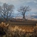Western Colorado... by DriveByPhotographer