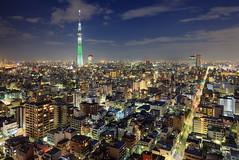 Tokyo Cityscape 7998