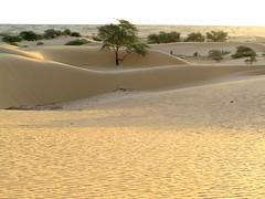 Mauritania 033