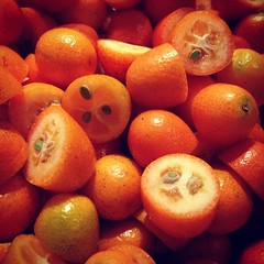 Kumquats on their way to becoming mostarda!
