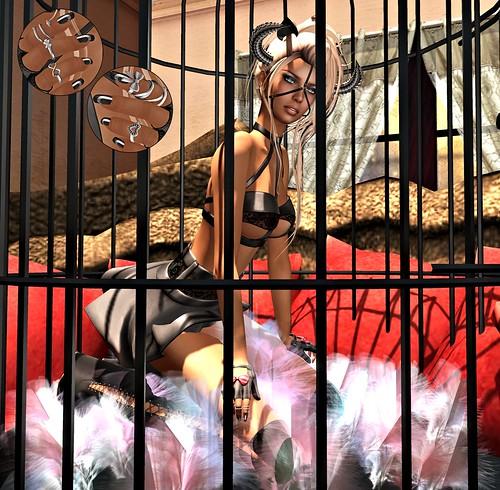 Caged_f