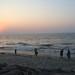 Final Sunset. Kochi