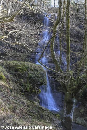 Parque Natural de Gorbeia  #DePaseoConLarri #Flickr -3093