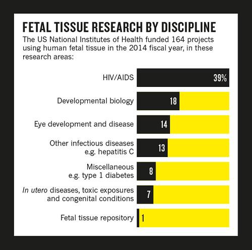 Investigación con tejido fetal por disciplina