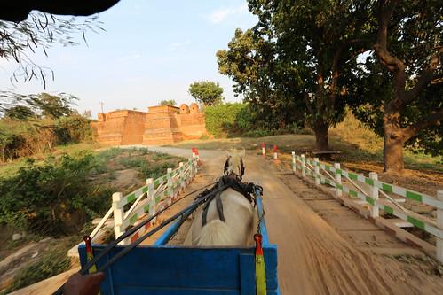 Horsecart ride in Innwa