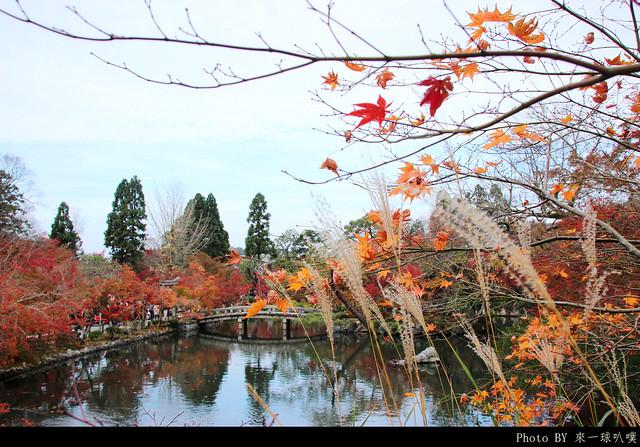 京都-永觀堂043