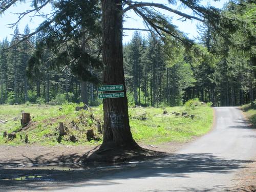 Elk Prairie Road is paved, Family Camp is not