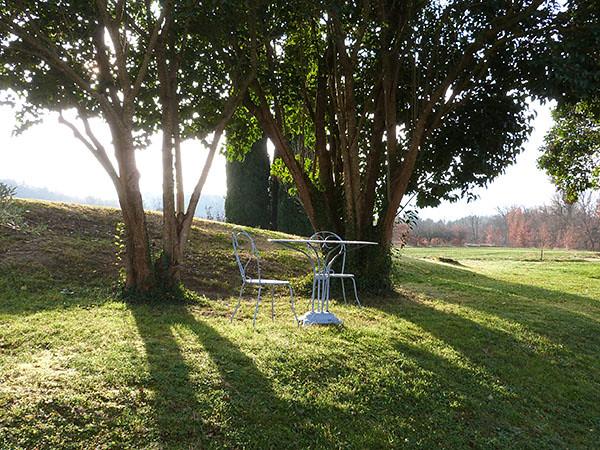 table et chaises dans le jardin