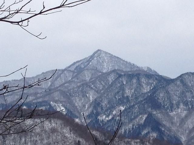 土蔵岳 支尾根 P727への道から蕎麦粒山