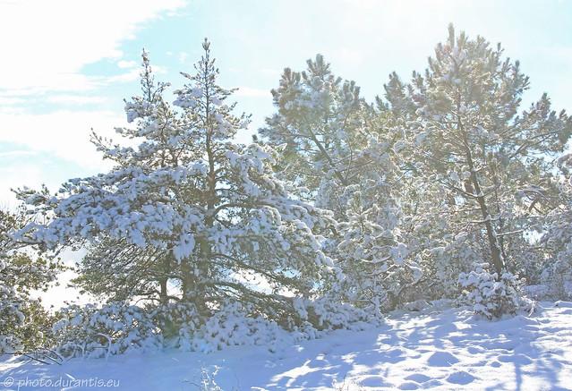 La neige et le soleil VII