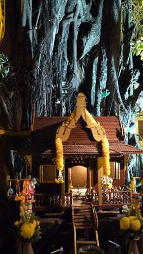 Thailand-0903
