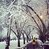 Davis Sq #somervillema #bosnow #yellow #snow