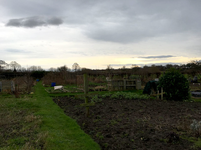 allotment January