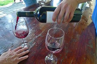 Vina Undurraga - Wine tasting pour