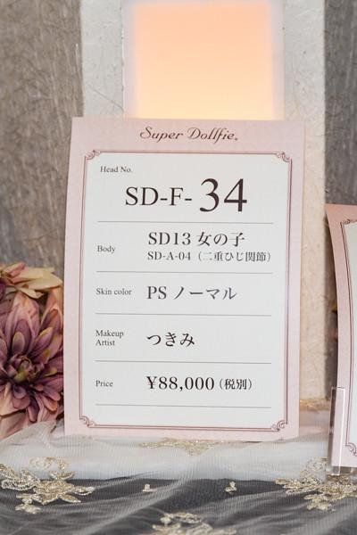 HTドルパ京都13 フルチョイスワンオフ SD F-34