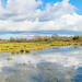 Leigh Common Panorama - Dorset by JackPeasePhotography