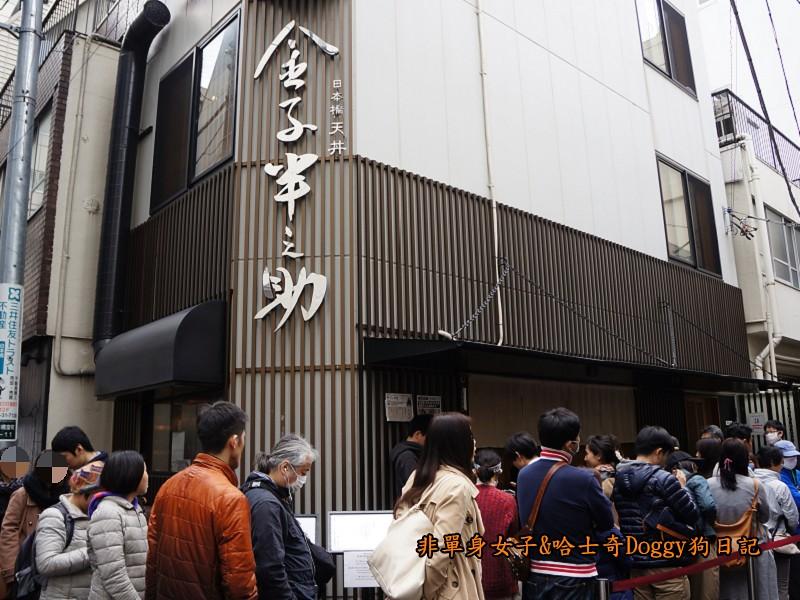 日本橋天丼金子半之助炸蝦飯01