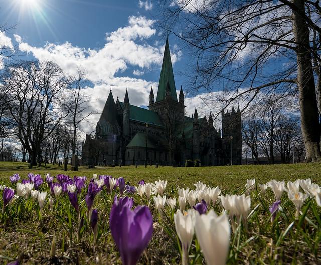Nidaros Cathedral Spring Edition