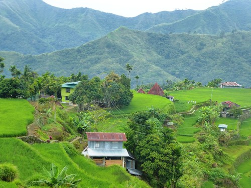 P16-Luzon-Mayoyao-Terrasses (5)