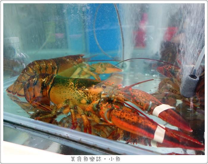 【新北板橋】猛嘎海鮮燒物/林道遠開的店 @魚樂分享誌