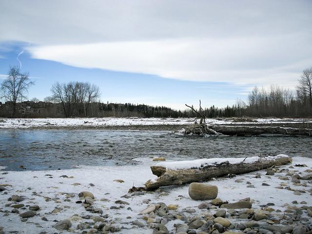 Elbow River November 2008-3524