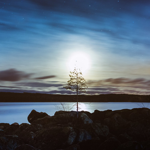 longexposure autumn moon lake tree fall nature water horizontal mystery pine night finland stars outdoors rocks space horizon tranquility nopeople wanderlust fullmoon shore astrophotography watersedge nightsky universe jyväskylä cloudysky tranquilscene bluecolor canonef1635mmf28liiusm etukanavuori canon5dmarkiii
