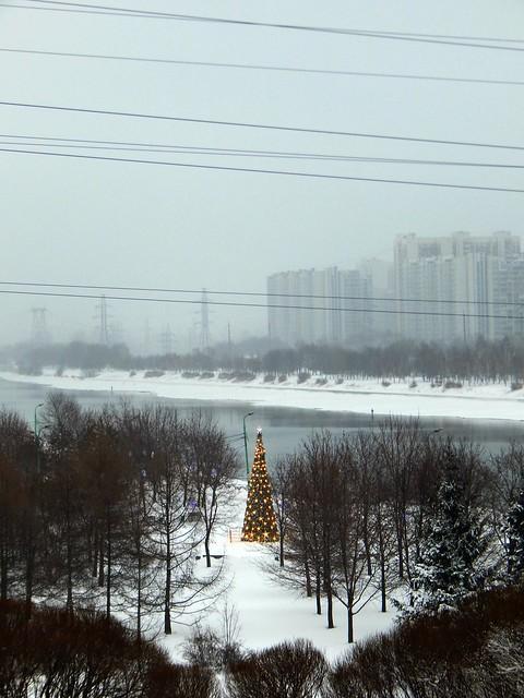 зимний парк и ёлки | ХорошоГромко.ру