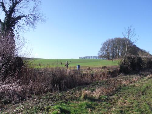 Pheasant Shoot near Wombwell's Farm