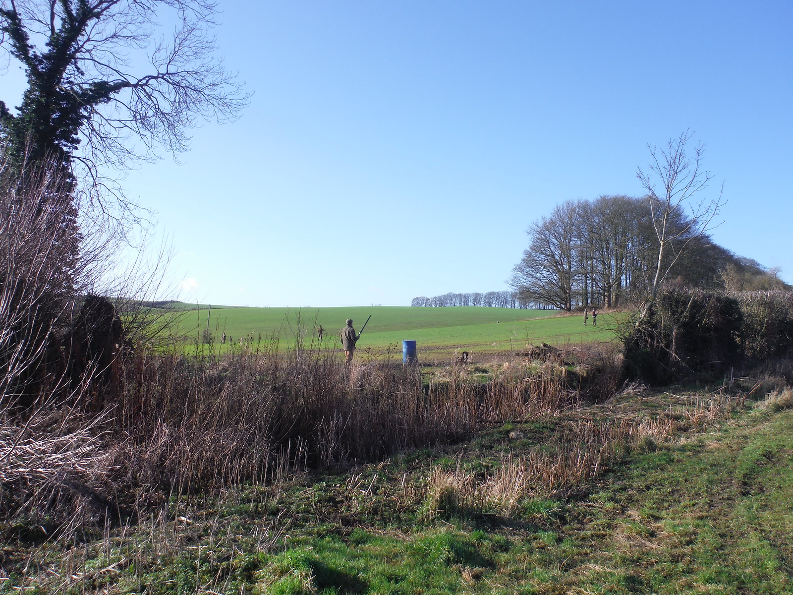 Pheasant Shoot near Wombwell's Farm SWC Walk 191 Haddenham Circular (via Brill)