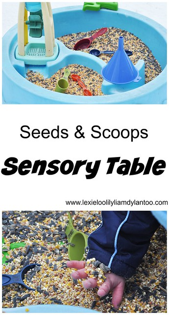 Seeds & Scoops Sensory Table