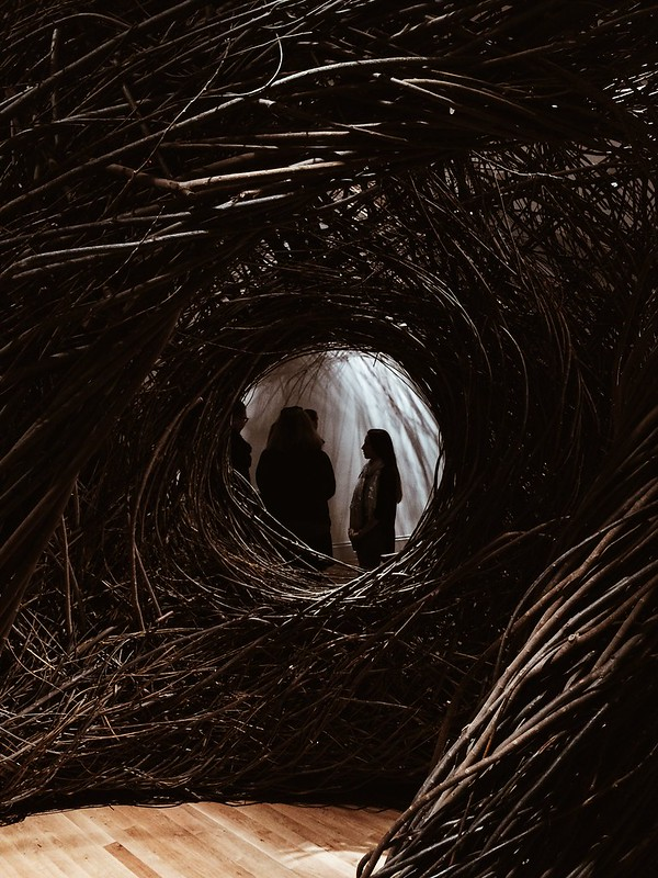 through the looking hole