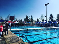 Metro Committee Short Course Championship 2016.           #downeyswim #Downey #DowneyDolphins