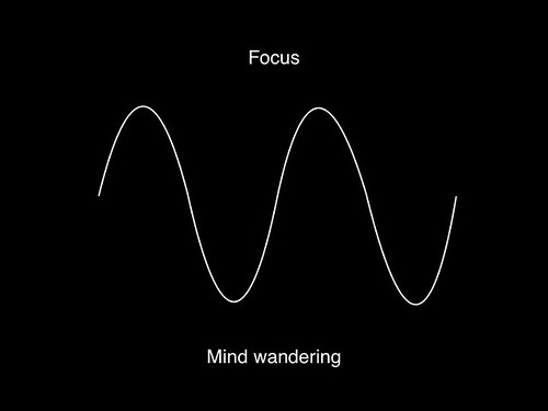 Focus and mind-wandering