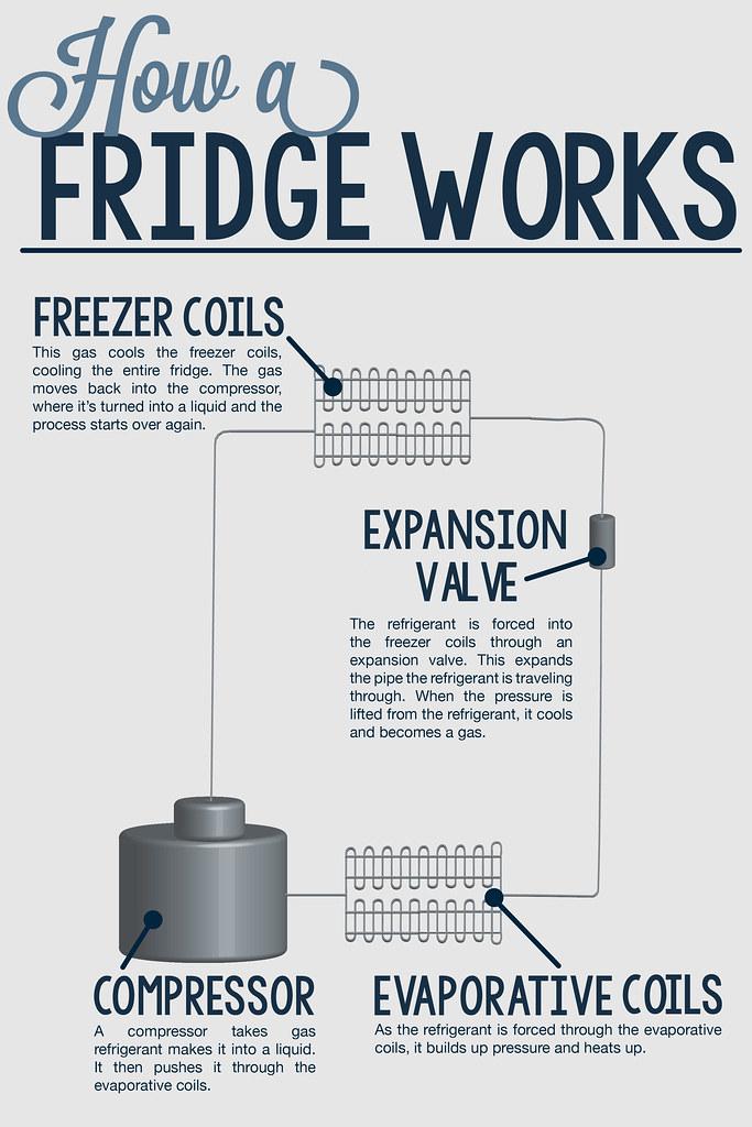How a fridge works diagram