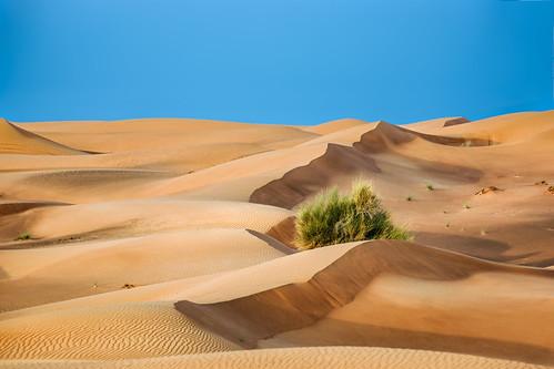 dubai wüste vae 2013 sandwüste