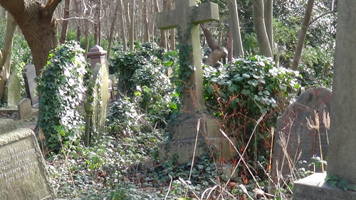 Highgate Cemetery Dec 15 (10)