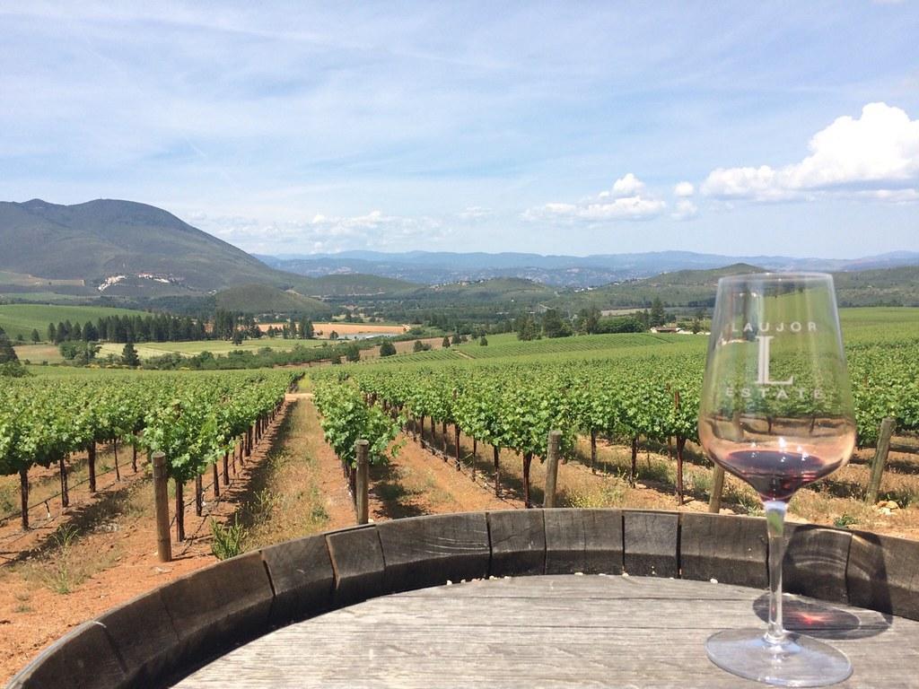 Lake County Wine Tasting 2