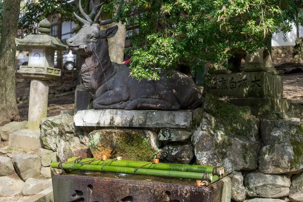 奈良(春日大社)