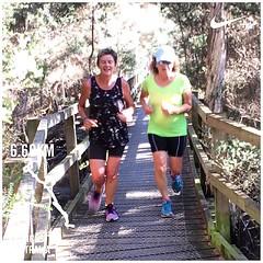 Love running with friends on Fridays :)  #upsticksandgo #exploring  #tasmania #instagood #launceston #instagram #discovertasmania #michfrost  #running #runningtrail #tailracetrack #jogging #fitness
