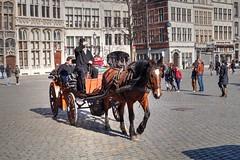 Anvers/Antwerpen (BE)