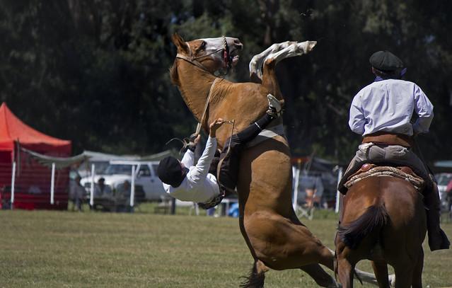 Jineteada Ayacucho (17)