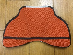 Hyod chest protector