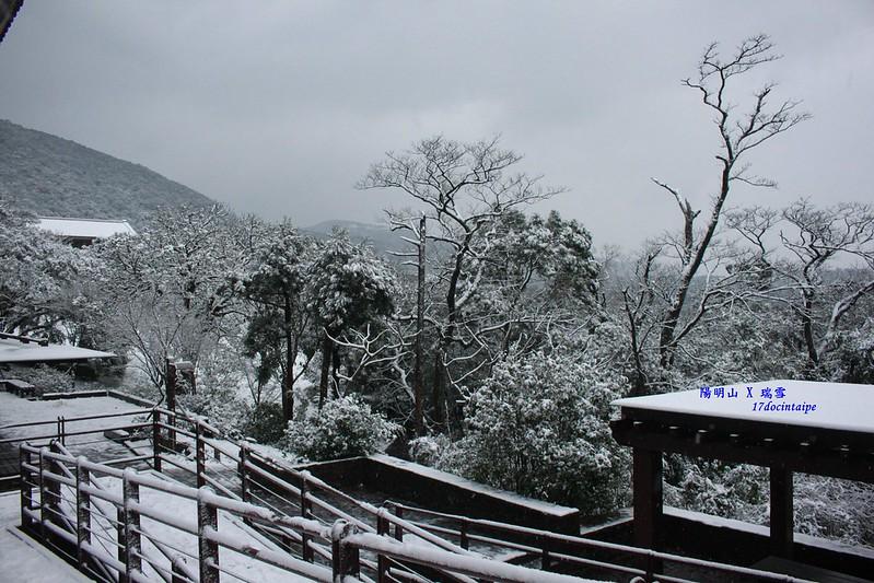 2016-台北陽明山-瑞雪-難得一見的雪白山景-17度C隨拍 (49)